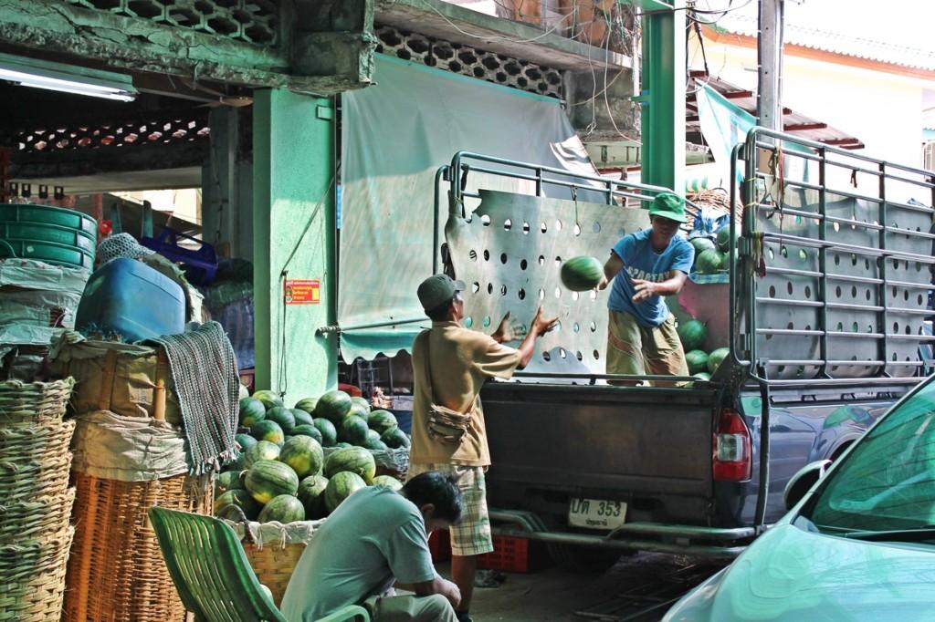 Vandmelonerne ankommer til markedet