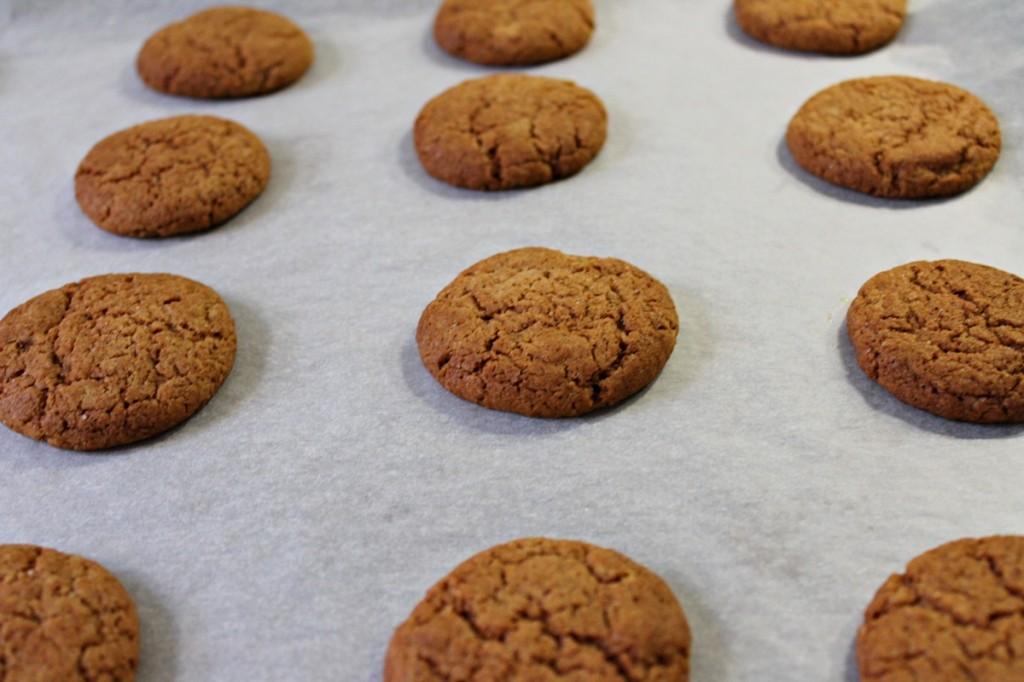 Ginger nuts, færdige1, oktober 2012